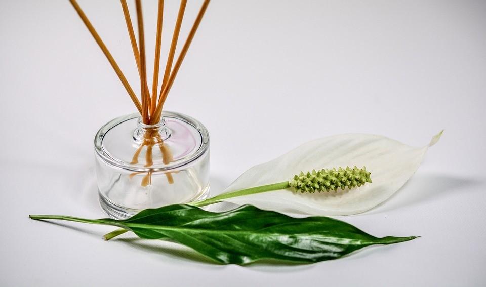 3 otthoni illatosító házilag